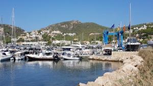 Marina Port Joan, Roses 1
